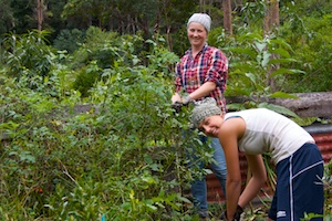 Clearing weeds! Nightfall, Lost World, Qld - 2013-05-10 at 10-51-30 (1)