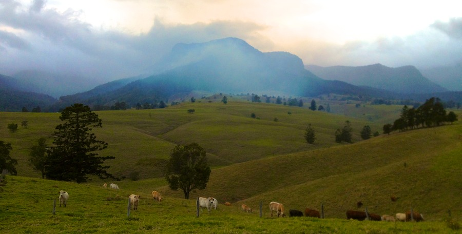 fire-at-widgee-at-lost-world-scenic-rim